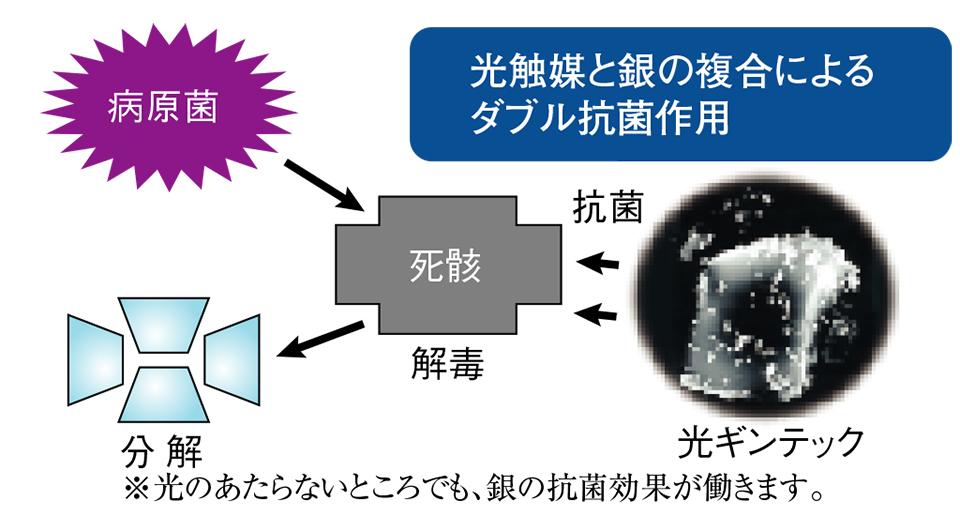 光触媒と銀の複合によるダブル抗菌作用